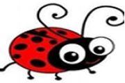 буба мара
